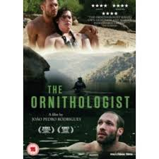 The Ornithlogist